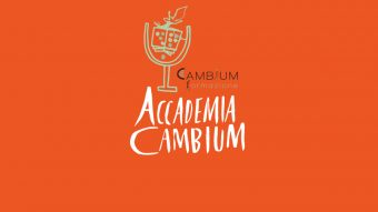 accademia_th